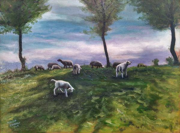 Ovelhas em Cadzand-bad
