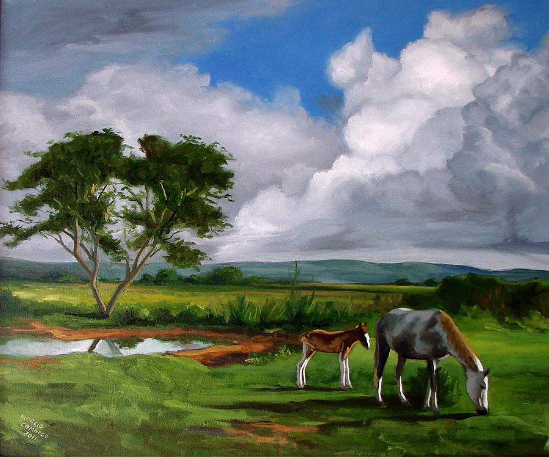 Imagens de pintura em tela