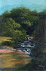 Cachoeira na sombra