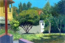 O Quintal de Márcio Camargo