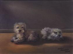 Pequenos Cães